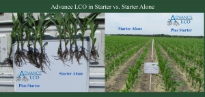 Advance LCO plus starter compared to starter alone