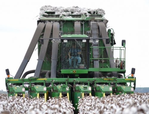 Get More From Your Cotton Defoliation Program
